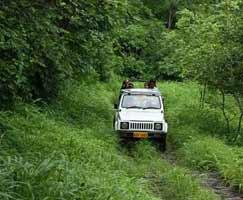 Honeymoon Tour To Chittorgarh